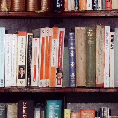viviennes-bookshelf-400x400